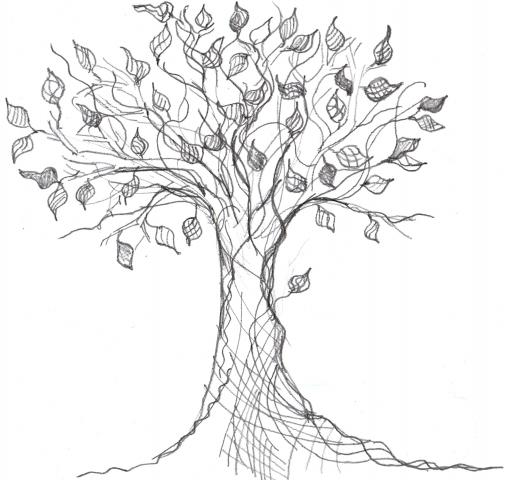 Cool Family Tree Drawings Dates Tree Drawings Family